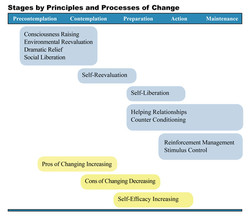 Stages by Principles and Processes of Change 