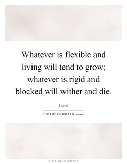 Whatever is flexible and 