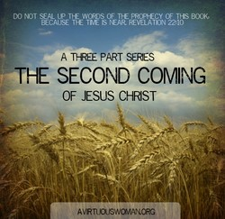 DO NOT SEAL UP THE WORDS OF THE PROPHECY OF THIS BOOK, 