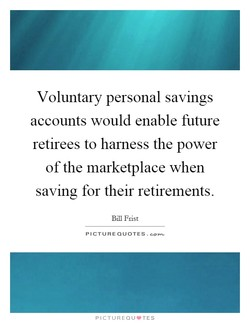 Voluntary personal savings 