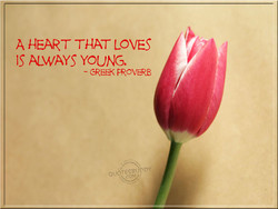 A HEART THAT LOVES 
