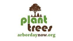 tfeer 