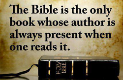Tie Bible is the only 