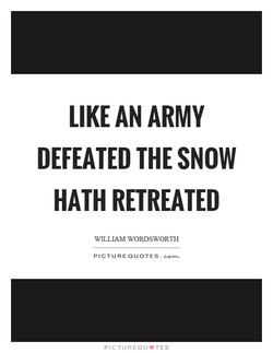 LIKE AN ARMY 
