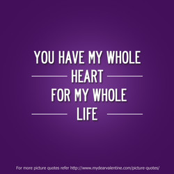 YOU HAVE MY WHOLE 