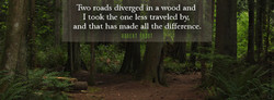 IWo roads diverged in a wood and 
