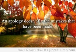 Amapology 