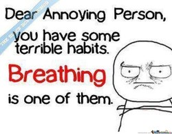Dear Annoying Person, 