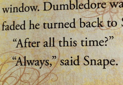 window. Dumbledore 