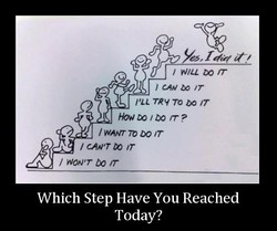 / MLL DO m 