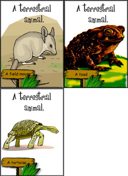 f A field mou 