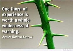 One thorn of' 