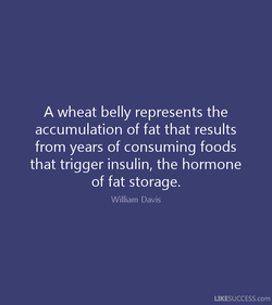A wheat belly represents the 