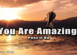 Iou-Are Amazing 