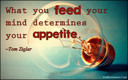 What you feed y ur 