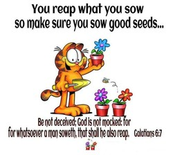 You reap what you sow 