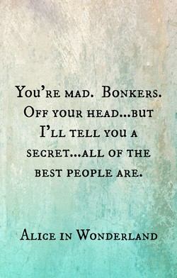 YOU'RE MAD. BONKERS. 