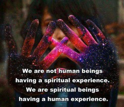 We are not,human beings 