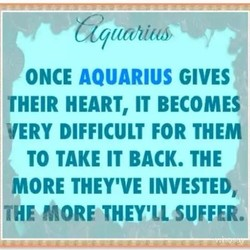 bdq 