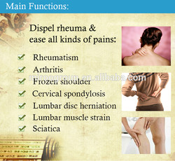 Main Functions: 
