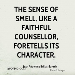 THE SENSE OF 