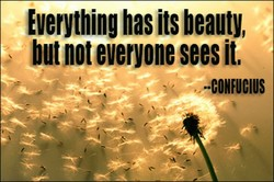 Everything has its beauty, 