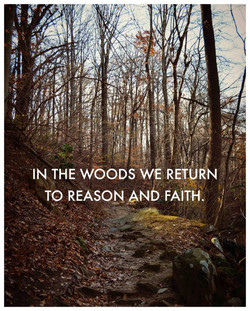 'IN THE W00Ds WE RETVRN 