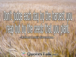 blt b! the seeds fit p antl 