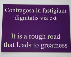 Confragosa in fastigium 