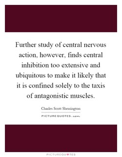 Further study of central nervous 