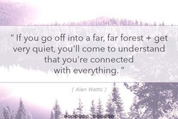 If you go off into a far, far forest + get 