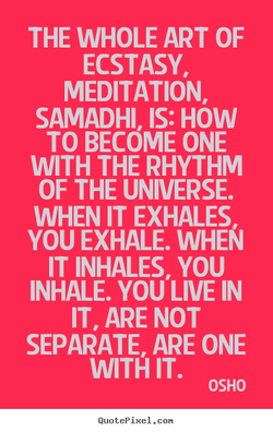 THE WHOLE ART OF 