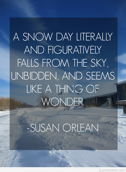 A SNOW DAY LITERALLY 