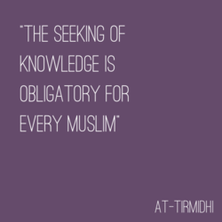 THE SEEKING OF 