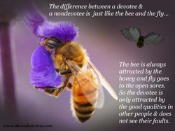 The difference between a devotee & 