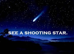 SEE A SHOOTING STAR.