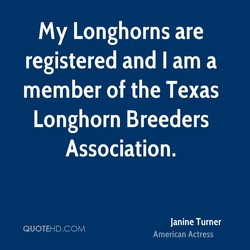 my Longhorns are 
