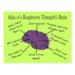 Atlas of a Respiratory Brain 
