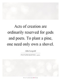 Acts of creation are ordinarily reserved for gods and poets. To plant a pine, one need only own a shovel. Aldo Leopold PICTURE QUOTES. PICTUREQU'TES