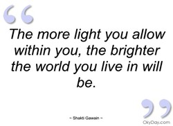 The more light you allow within you, the brighter the world you live in will be. — Shakti Gawain — OkyDay.com