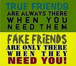 TRUE FRIENDg 