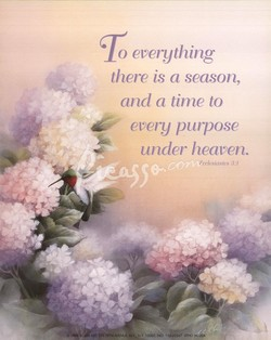 o everything 