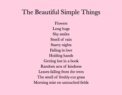 The Beautiful Simple Things 