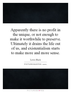 Apparently there is no profit in 