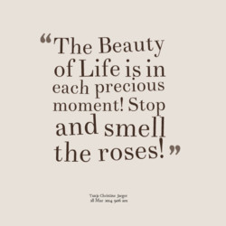 The Beauty 