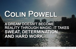 COLIN POWELL 