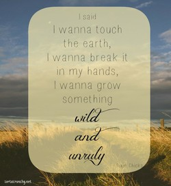 I said 