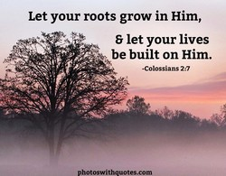 Let your roots grow in Him, 
