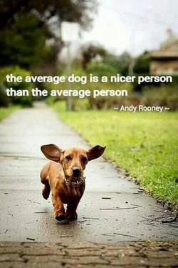 is a nicer person 