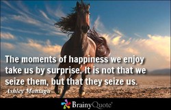The moments f happines weenjpyj 